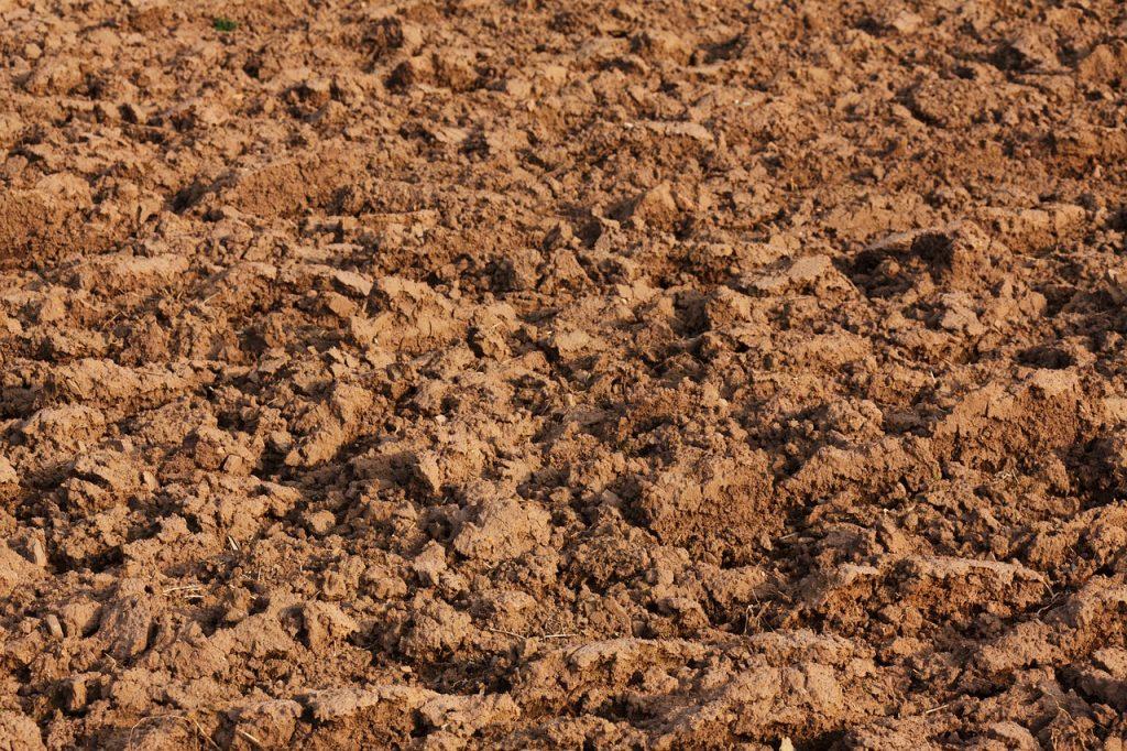 dream digging soil