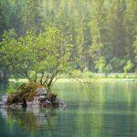 River Dream Interpretation