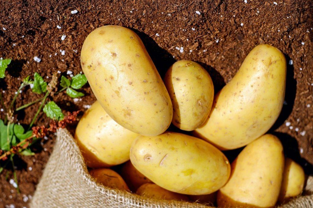 Potatoes Dream Interpretation