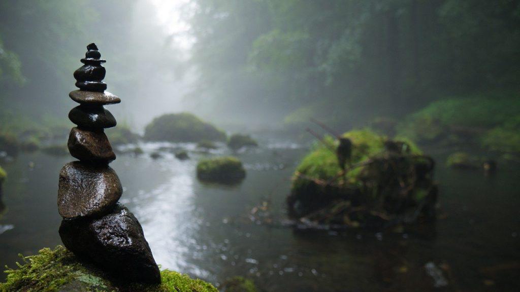 Swamp Dream Interpretation