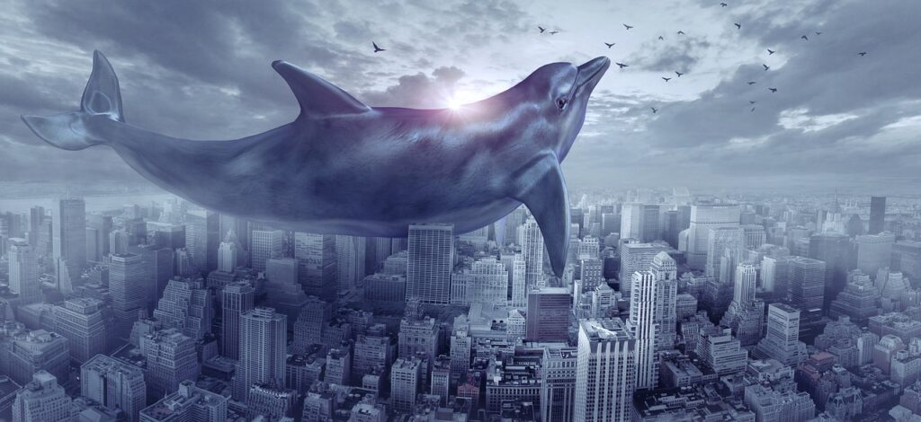 Dolphin Dream Interpretation