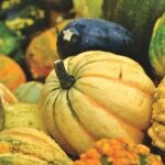 Pumpkin Dream Interpretation