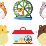 Hamster Dream Interpretation