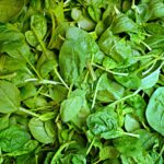 Spinach Dream Interpretation